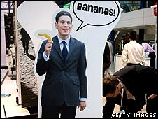 A Tory cardboard cut out of David Miliband