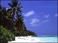 شاطىء في المالديف