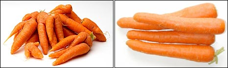 Irregular (Sainsbury's) and regular carrots