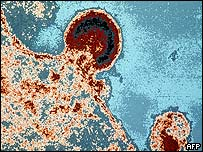 Célula atacada por el VIH