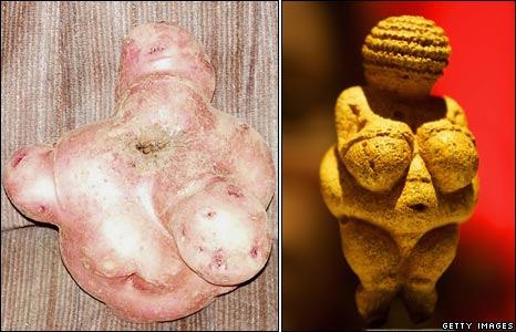 Potato (taken by Laurie Brown) and the Venus of Willendorf
