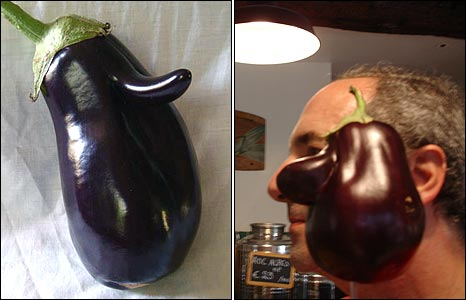 Aubergines by Johnny Vee and Nadim Beyrouti