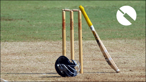 Stumps with TMS logo
