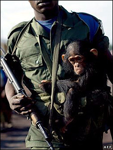 Soldier with a chimpanzee (Image: AFP)