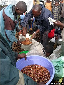 Distribution of beans to rangers' families (Image: Gorilla.cd)