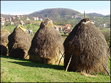 Haystacks in Sevarlija