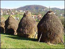 Haystacks in Sevarlija