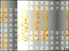 DNA code and numbers