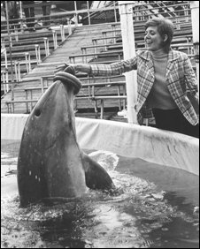Dolphin and Cilla (BBC)
