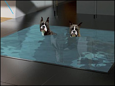 Dog spa - artist's impression