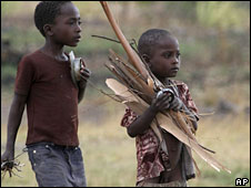 Two young children carry firewood for cooking in Zimbabwe