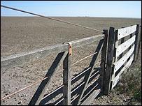 Campo arrasado para agricultura