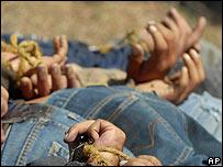 Víctimas del la narco violencia en Sinaloa
