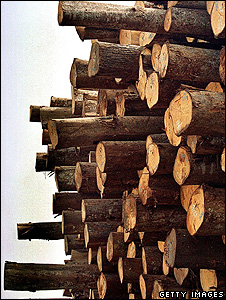 Pile of logs (Getty Images)