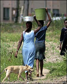 Ladies carrying buckets of water are followed by a dog