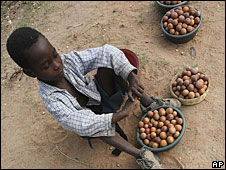 A school child sells wild fruits alongside a roadside in Zimbabwe