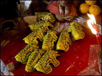 Tigres de papel. Foto: Jin Nan