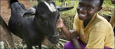Rwandan carry all goat fur midnight
