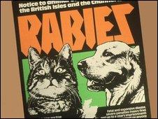 Rabies warning poster