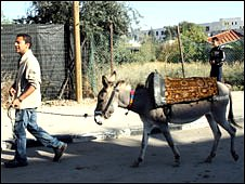 Aleem Maqbool and his (third) donkey, 17 December 2008