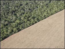 Aerial shot showing land cleared for crops in the Amazon