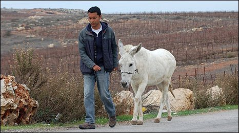 BBC's Aleem Maqboul walks toward Bethlehem with donkey