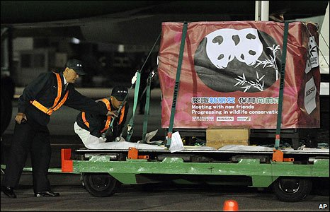 Pandas are offloaded at Taiwan's Taoyuan airport (23/12/2008)