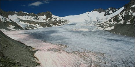 Rhone Glacier (Huss et al)