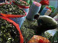 Venta de hojas de coca