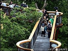 The treetop walkway at Kew Gardens