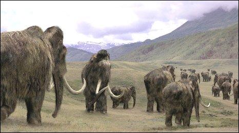 Mammoth impression (BBC)