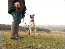 Dog & dog owner in the Chilterns