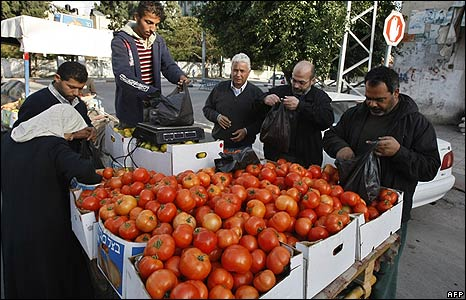 Gazans shop at vegetable stall in Gaza City during the suspension of fighting on 8/1/09