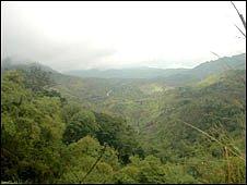 Solenodon habitat in Haiti (Sam Turvey)