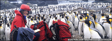 Dand Bergstrom with penguins