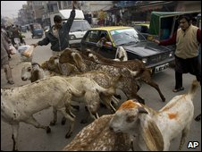 Street scene in Rawalpindi
