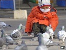 Child feeds pigeons in Beijing