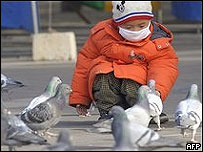 Ребенок кормит голубей, Пекин