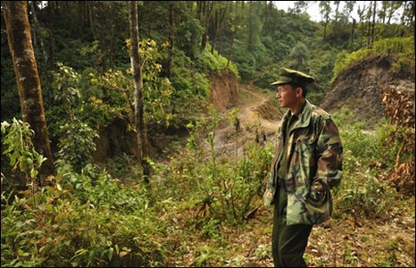 A soldier stands in a jungle location