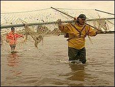 Haaf fishermen