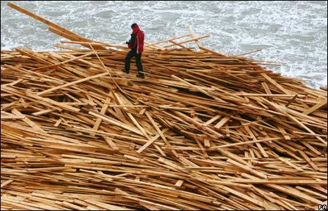 Timber on beach