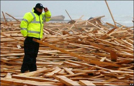 Man surveys wood