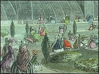 Dibujo de Kew en sus inicios Experta de Kew con una planta tropical (Imagen: gentileza Kew Gardens)