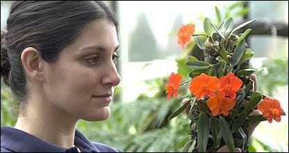 Experta de Kew con una planta tropical (Foto: gentileza Kew Gardens)