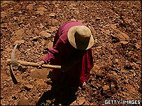 Campesina boliviana labrando tierras