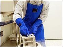 Células madre almacenadas en nitrógeno líquido