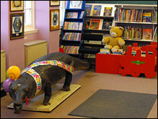 Crocodile in Wick library. Picture: Highland Council