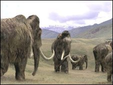 Mammoth impression (BBC)