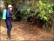 A Liberian worker sprays insecticide to combat the plague, file pic from 20 January 2009