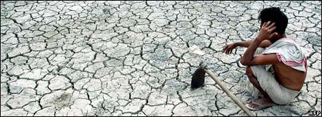 Farmer in parched field